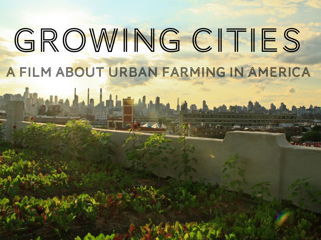 Growing Cities:  A film about Urban Farming in America's video poster
