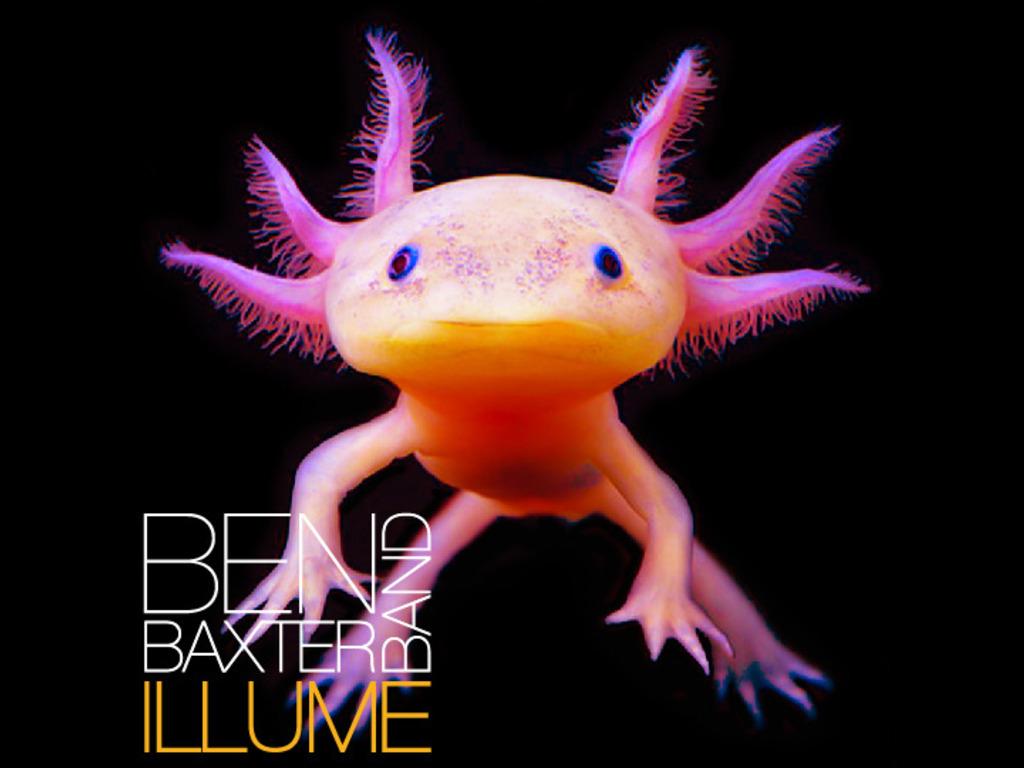 """Illuminating """"Illume""""'s video poster"""