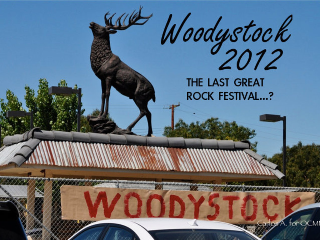 Woodystock 2012: Help Us Reach $1,000's video poster