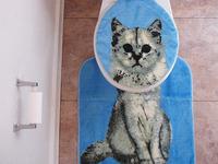Cat Head Toilet Lid Cover & Cat Body Bathroom Rug!