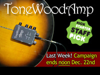ToneWoodAmp For Acoustic Guitars