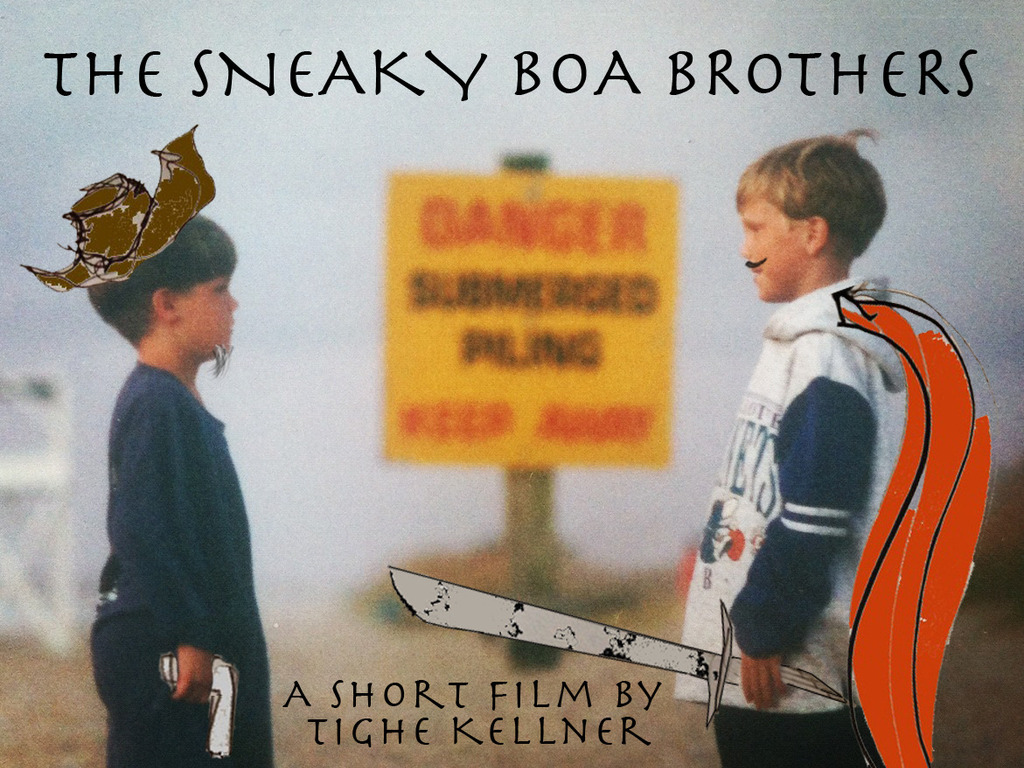 The Sneaky Boa Brothers's video poster