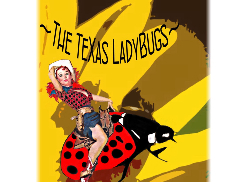 TXLadyBugs Invite You to Saddle-Up! Join the Posse!'s video poster