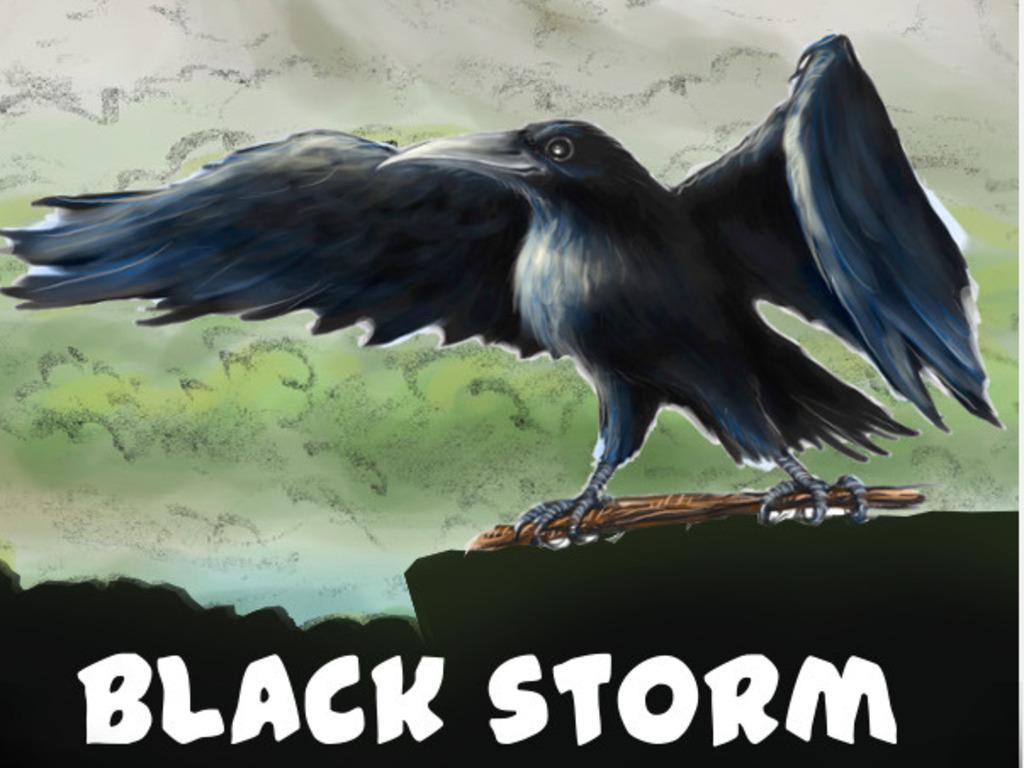 Black Storm's video poster