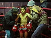 Thailand's child fighters