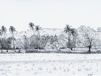 Prints, Book, etc of my landscape drawings.