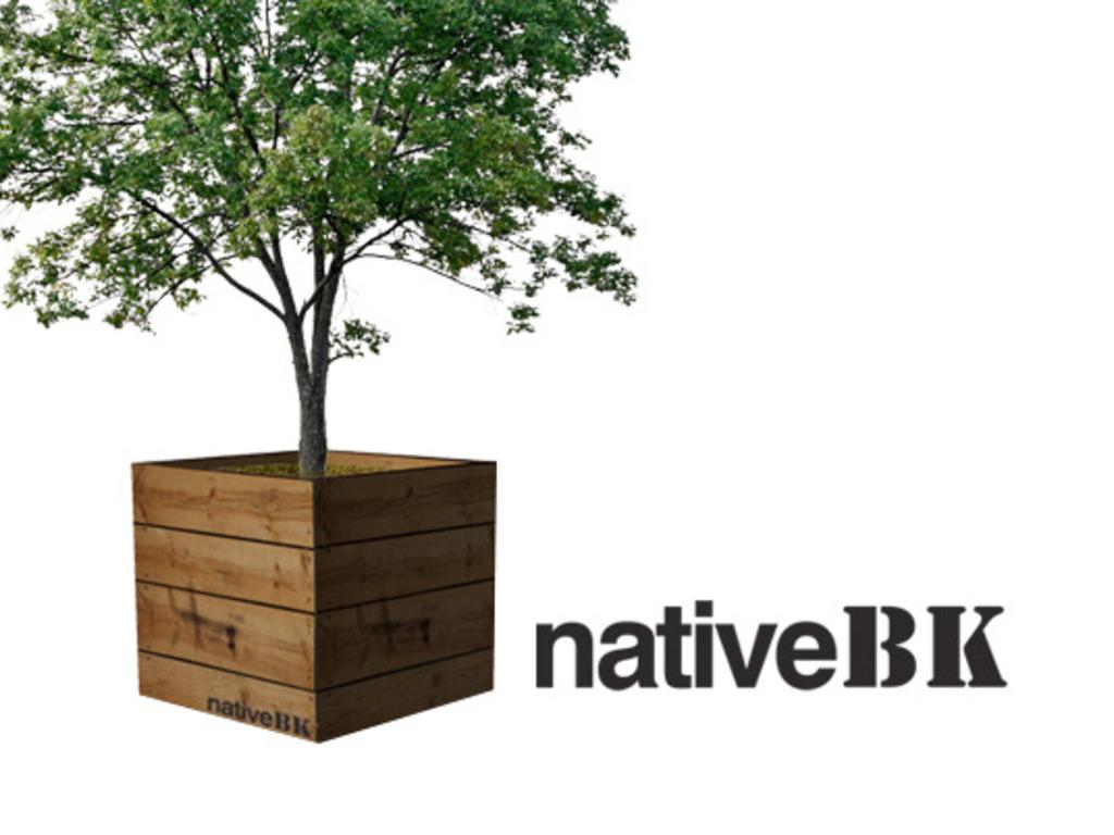 nativeBK's video poster