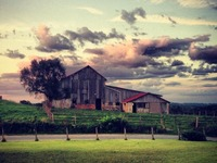 Arcadian Acres - Preserving Heritage Animals & a Family Farm