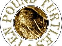 Ten Pound Turtles Debut CD