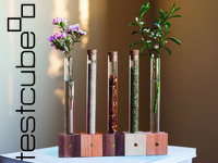 Test Cubes - Magnetic modular vase and spice rack