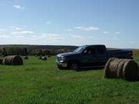 Farming Dreams