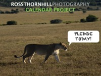3 DAY PROJECT! ROSS THORNHILL PHOTOGRAPHY 2015 CALENDAR