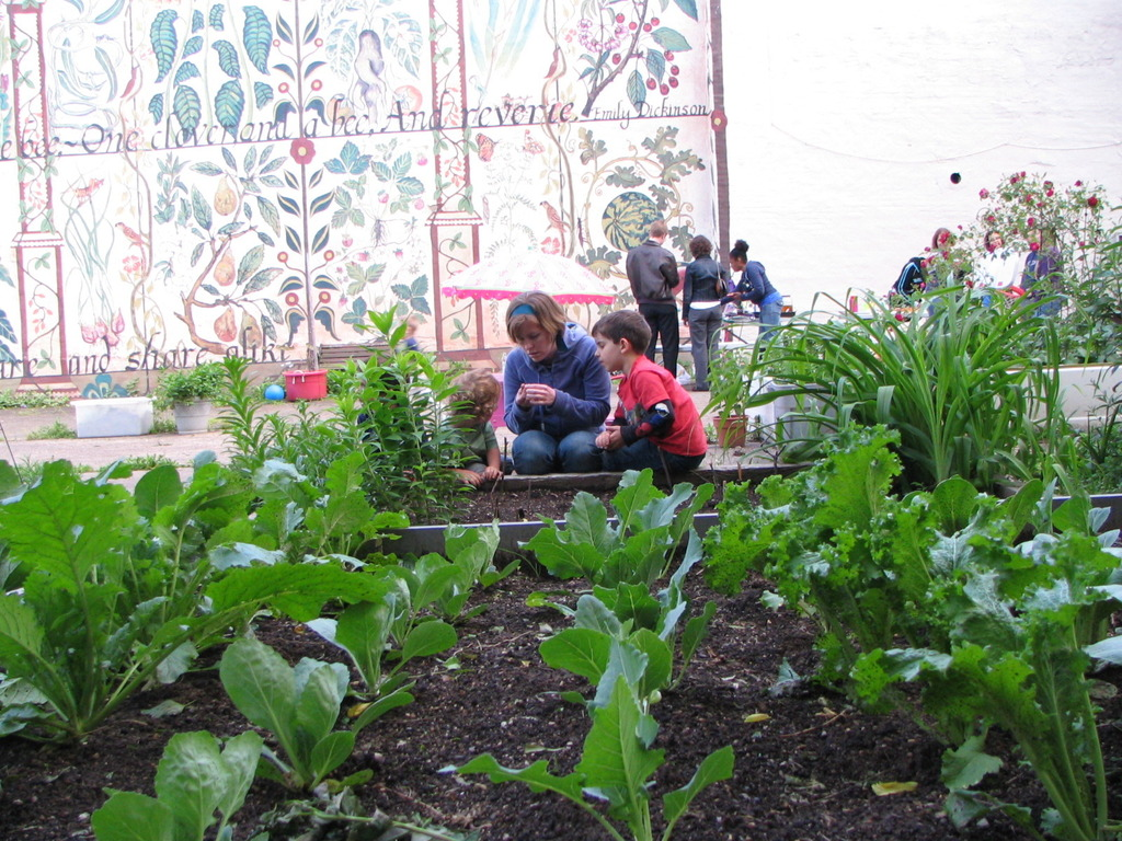 Preserve Green Space & Save the Sloan Street Community Garden's video poster