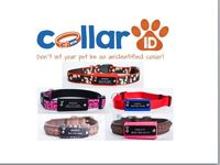 Collar ID-No Jingle Pet ID for any collar on your dog or cat