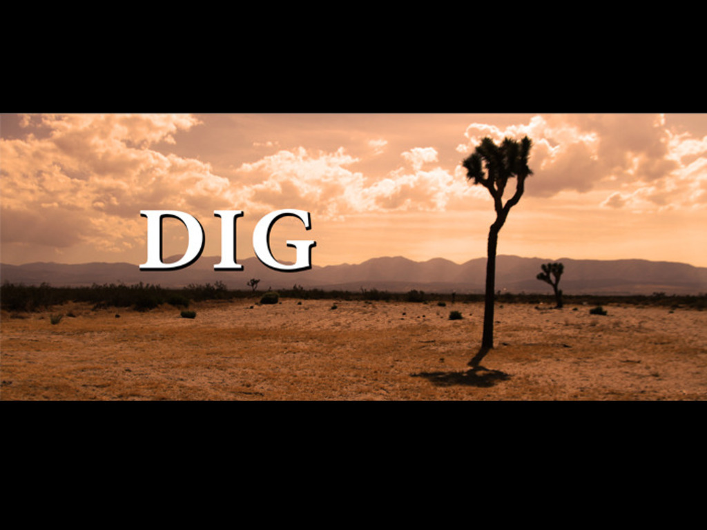 Dig Short Film's video poster