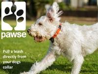 PAWSE: The Automatic Dog Leash.