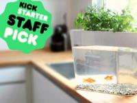 Ecofarm | Grow fresh food with your own mini ecosystem