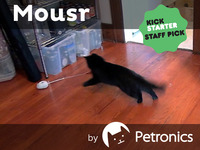 Mousr: The robotic mouse that plays with your cat