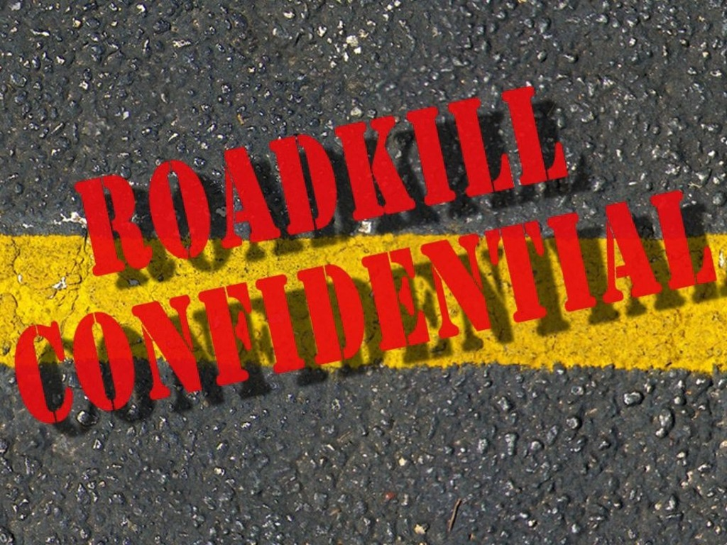 Roadkill Confidential by Sheila Callaghan's video poster