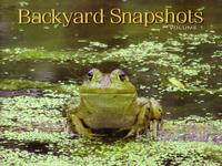 Backyard Snapshots Volume 1 by Adrienne Petterson