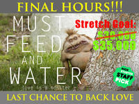 Must Feed and Water - A Love Monster's Story