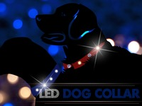 iOS/Android Programmable Dog Collar