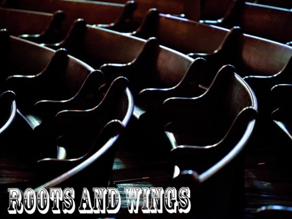 Roots And Wings: The Indelible Grace Music Documentary's video poster