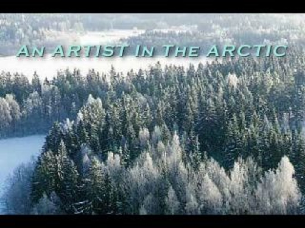 An Artist in the ARCTIC  RESIDENCY's video poster