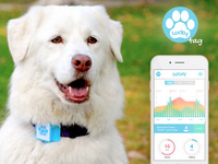 LUCKY tag :  A Smart Dog Wearable That Cares