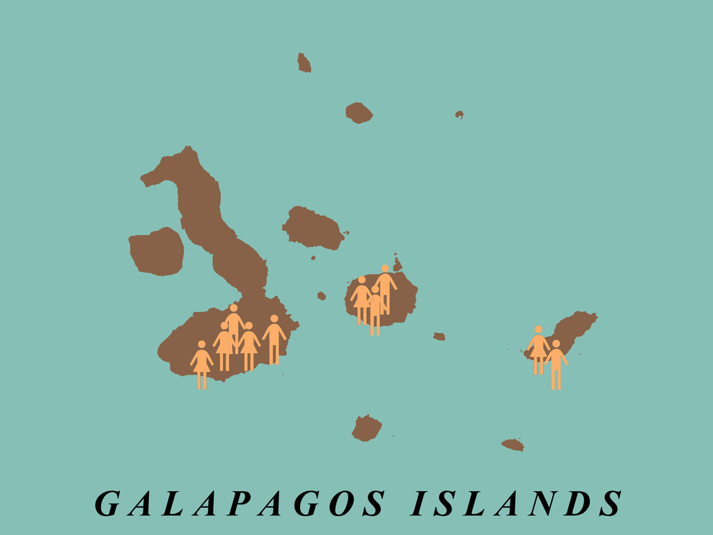 the Galapagos Complaint Department's video poster