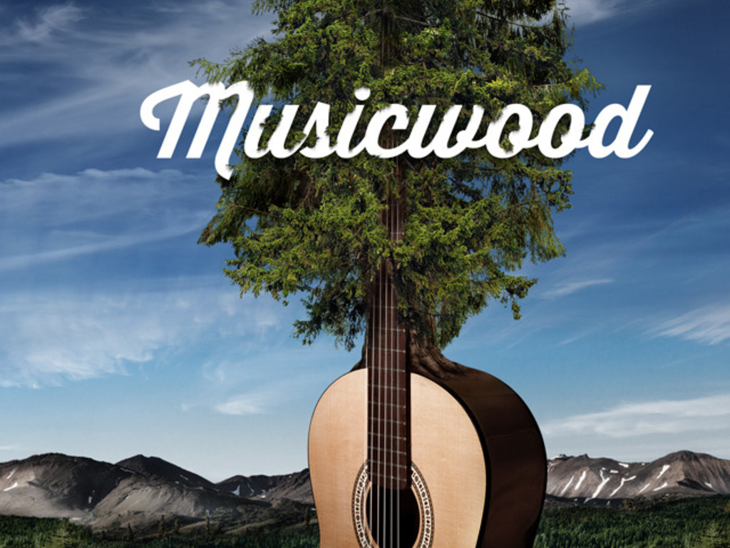 The Musicwood Documentary's video poster