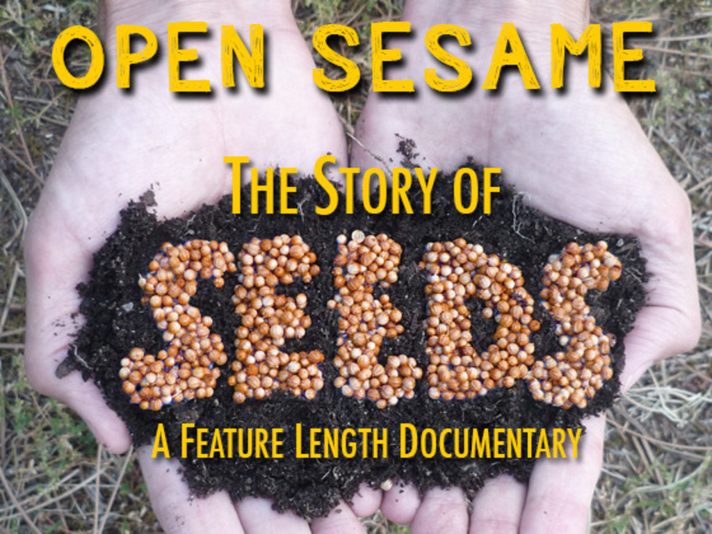 Open Sesame - The Story of Seeds's video poster