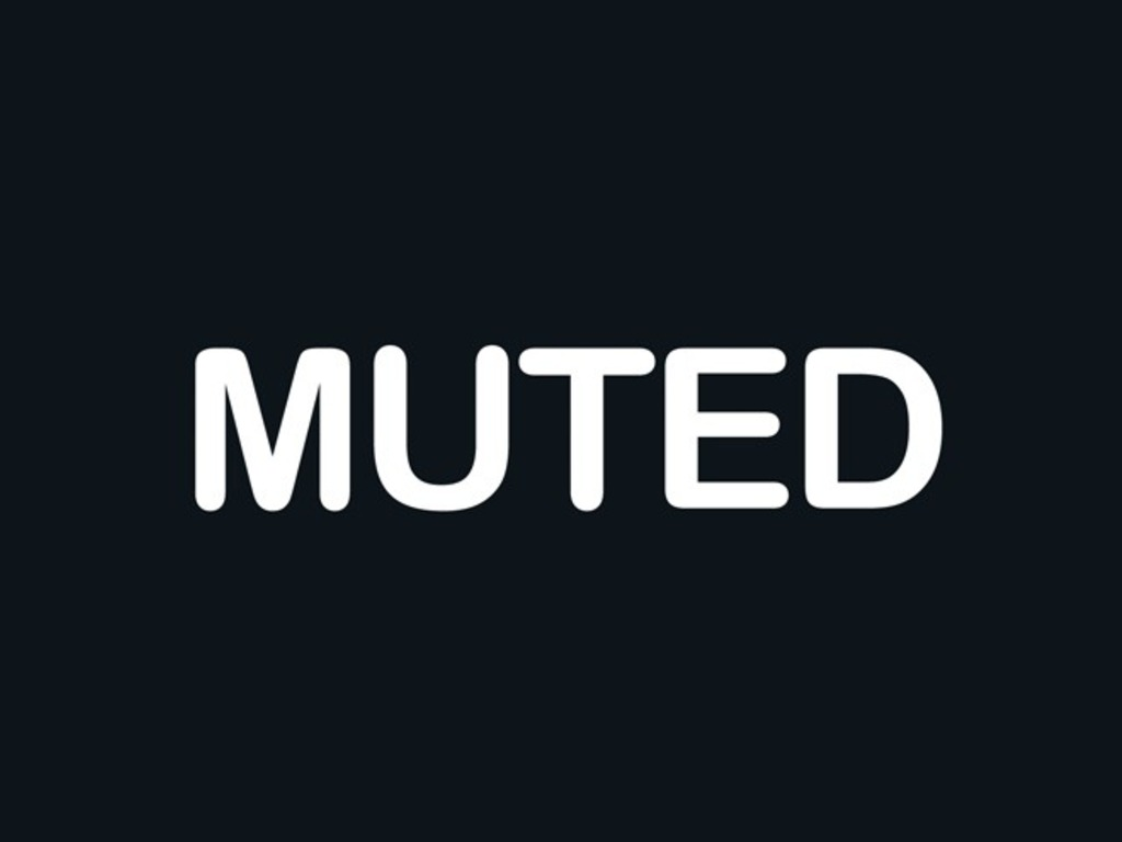 Muted's video poster