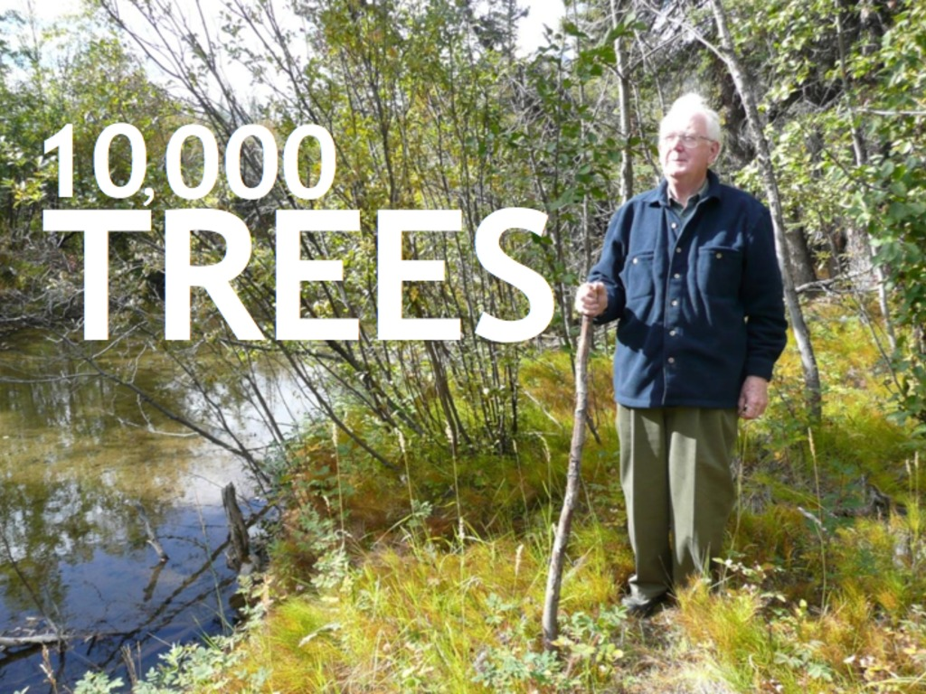 10,000 Trees: help a short documentary grow tall.'s video poster