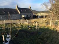 East Scotland Smallholding