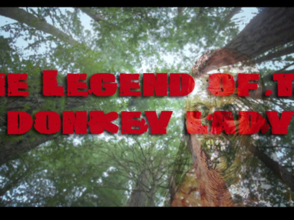 King's Ranch - The legend of Donkey Lady's video poster