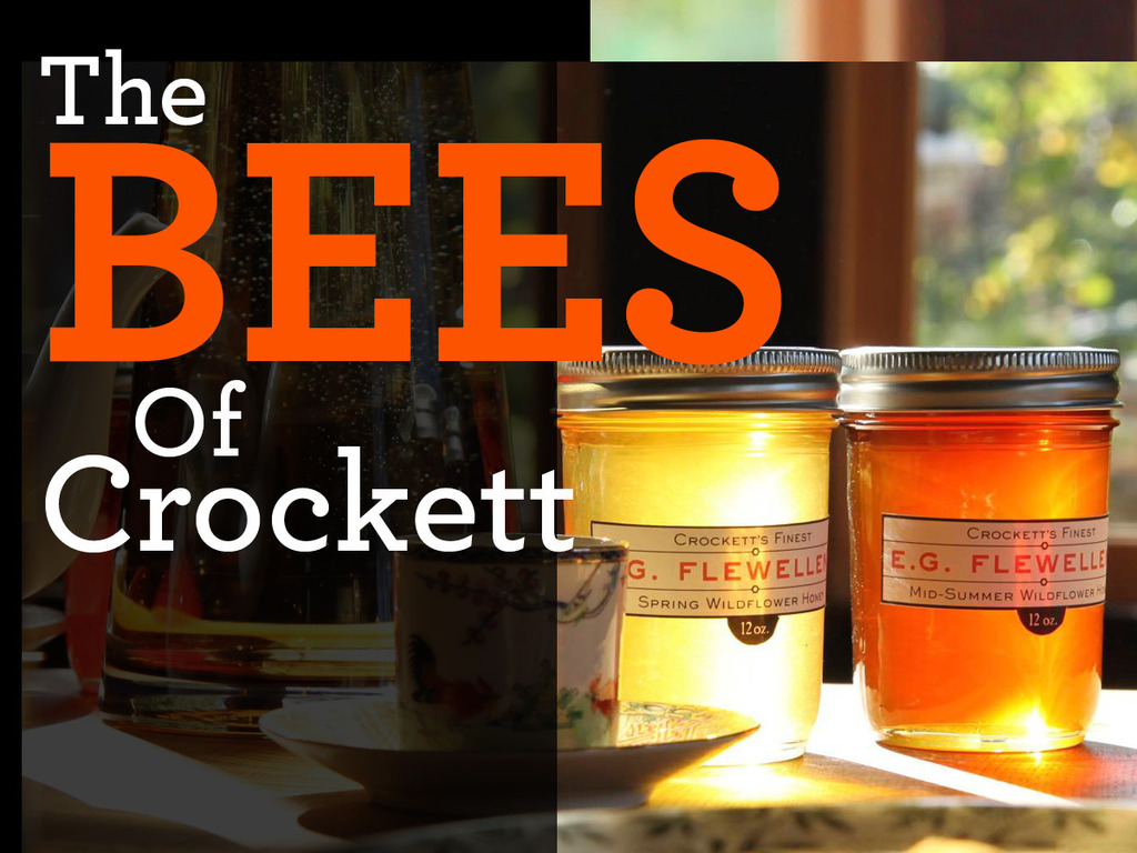 The Bees of Crockett's video poster