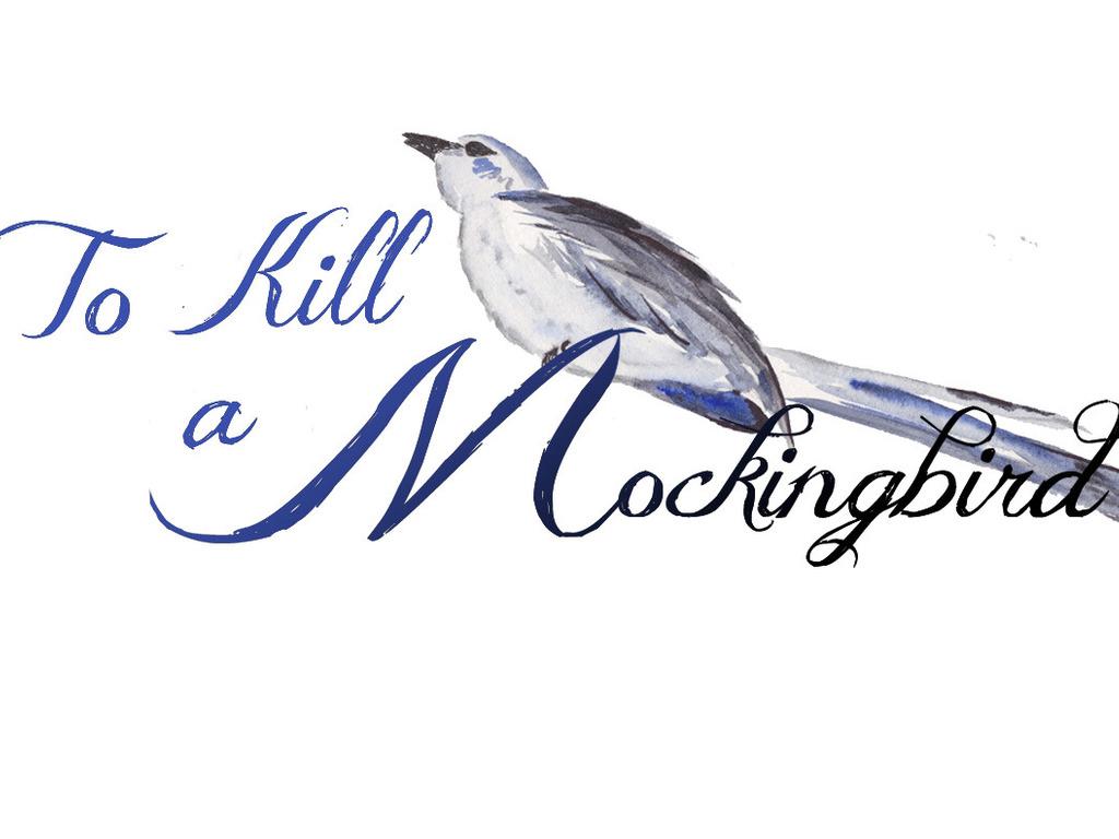 Purple Crayon Players present To Kill a Mockingbird's video poster