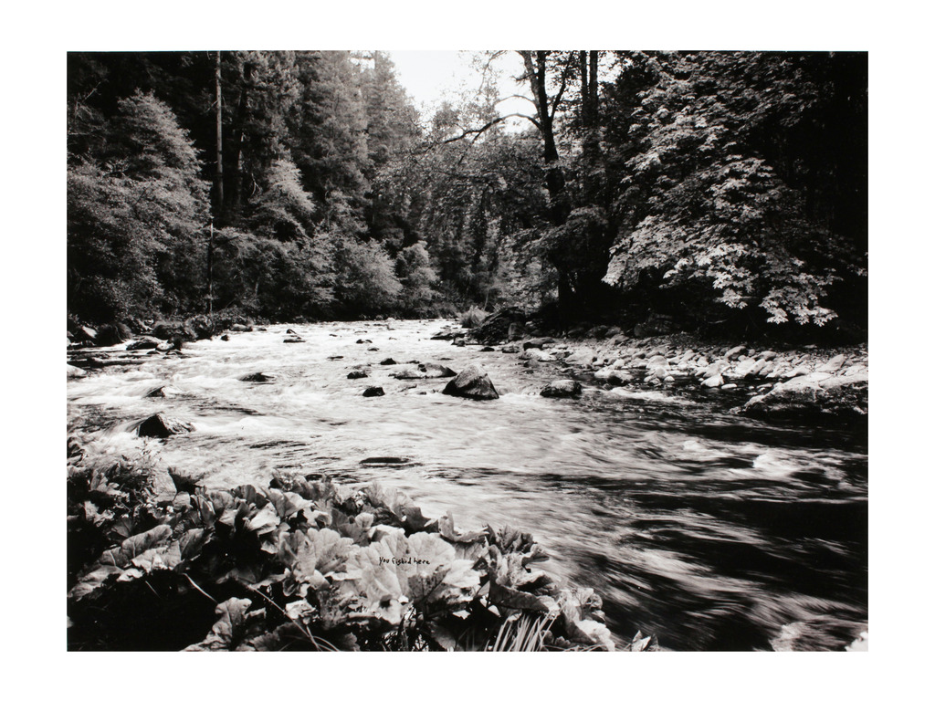 The McCloud River's video poster