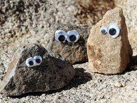 Googly Eyes For Rocks