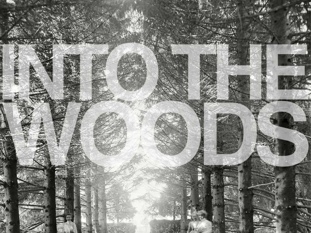 INTOTHEWOODS.TV – Music Media from the Pacific Northwest's video poster