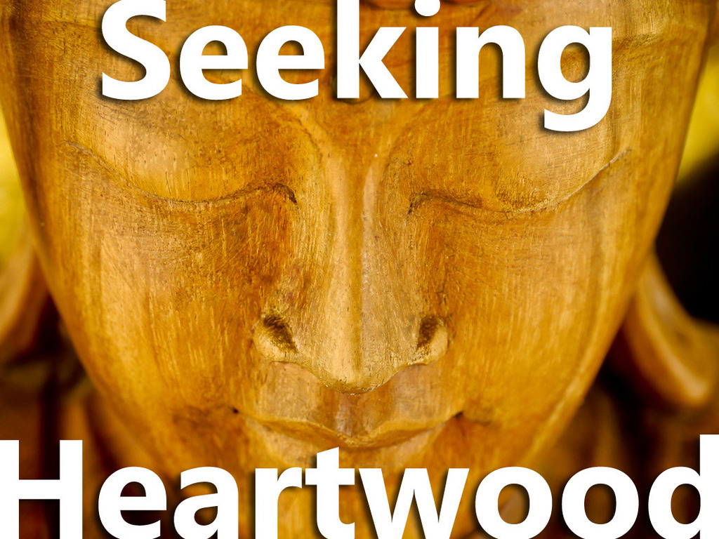 Seeking Heartwood - Documentary on Buddhism in America's video poster