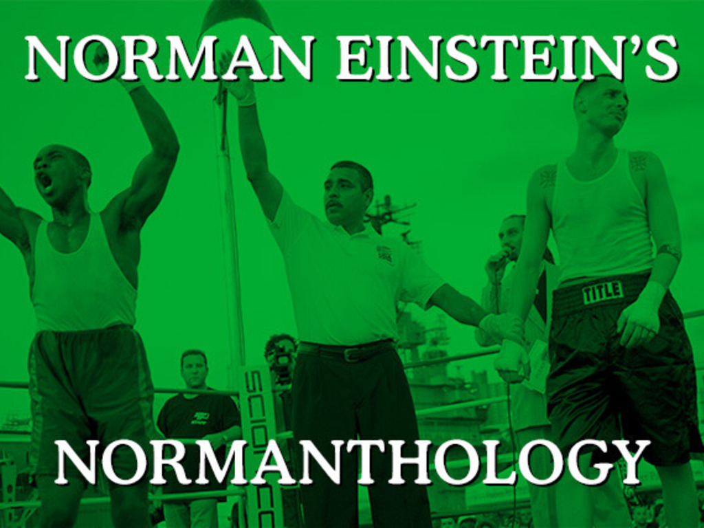 Norman Einstein's NORMANTHOLOGY's video poster