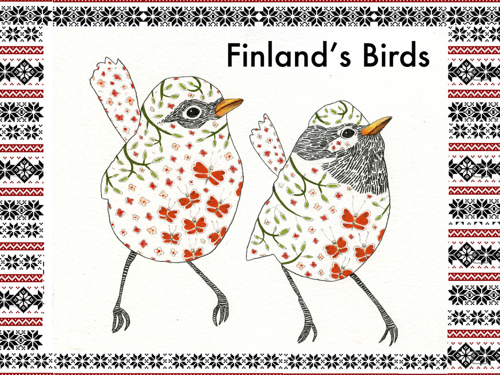 Birds of Finland - Arteles Center Summer Artist Residency's video poster