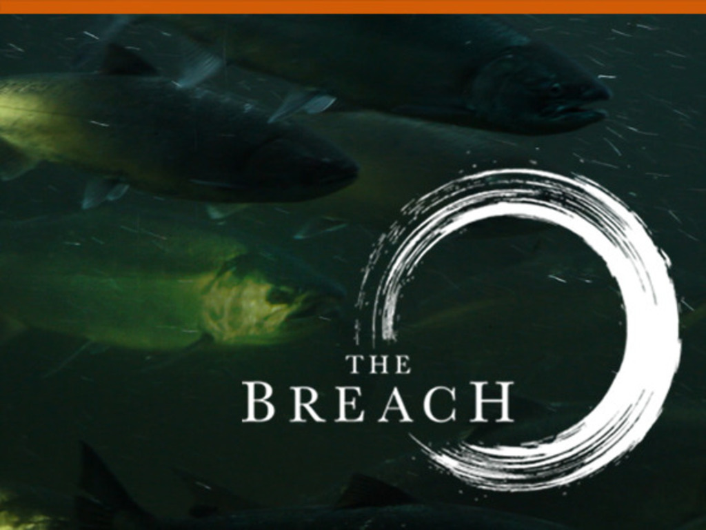The Breach's video poster