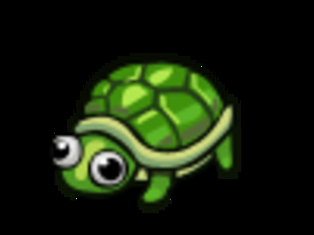 Turtle's Life's video poster