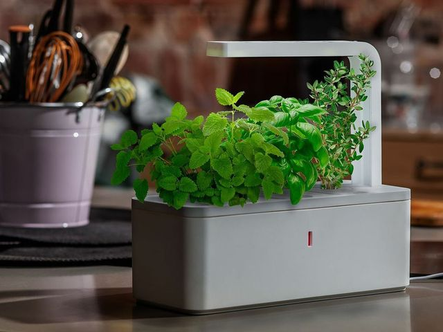 smart herb garden by click grow by click grow kickstarter. Black Bedroom Furniture Sets. Home Design Ideas