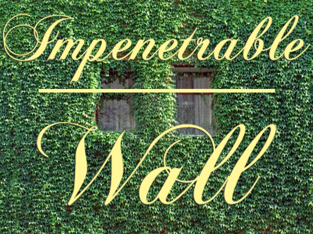 Impenetrable Wall's video poster