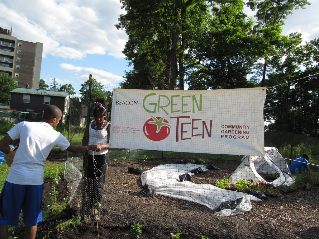 Green Teen Needs a Garden Shed!'s video poster