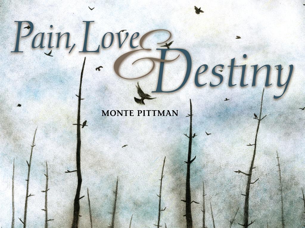 "Monte Pittman's upcoming album ""Pain, Love, & Destiny""'s video poster"
